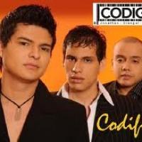 Codigo 3